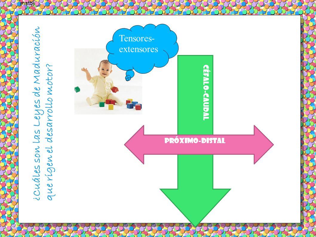 Evolución de la postura y la posición Hito: sedestación 6-8 meses Niños siguen una secuencia ordenada de desarrollo: desde el desarrollo del control de la cabeza al estadio en el que andan, corren y saltan de forma correcta Posición PRONA (0 a 8 meses) Posición de DECÚBITO SUPINO (0 a 8 meses ) Posición SENTADO (0 a 15 meses)