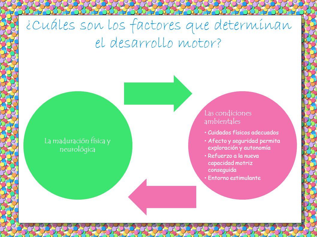 ¿Cuáles son los factores que determinan el desarrollo motor.