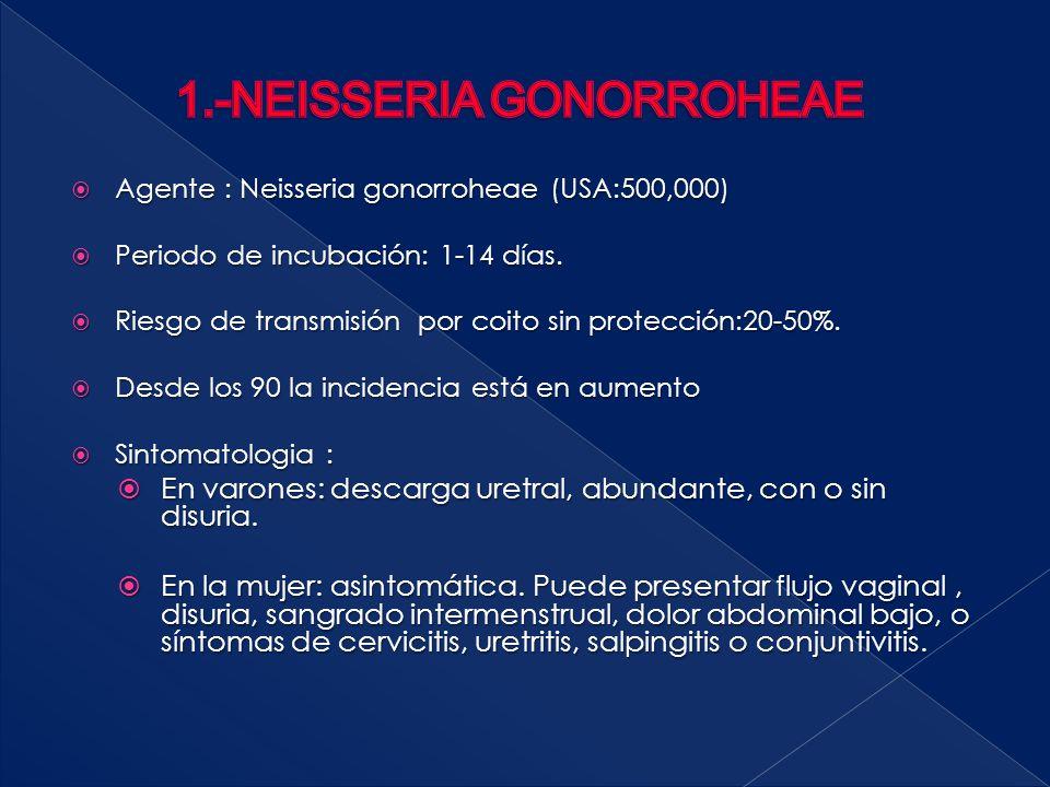  Agente : Neisseria gonorroheae (USA:500,000)  Periodo de incubación: 1-14 días.  Riesgo de transmisión por coito sin protección:20-50%.  Desde lo