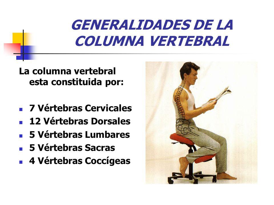 GENERALIDADES DE LA COLUMNA VERTEBRAL La columna vertebral esta constituida por: 7 Vértebras Cervicales 12 Vértebras Dorsales 5 Vértebras Lumbares 5 Vértebras Sacras 4 Vértebras Coccígeas