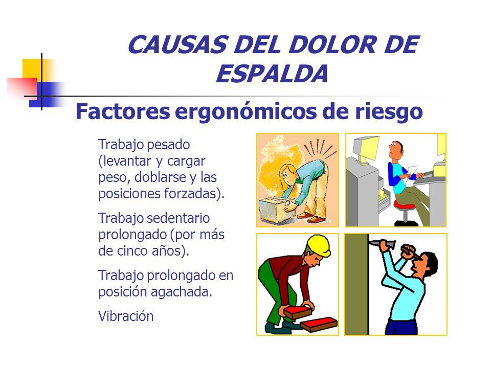 CAUSAS DEL DOLOR DE ESPALDA Trabajo pesado (levantar y cargar peso, doblarse y las posiciones forzadas).
