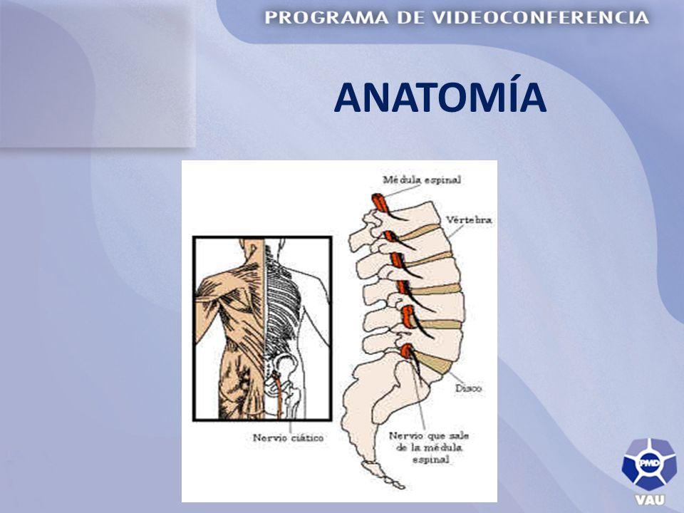 LUMBALGIA DEFINICIÓN: Es el dolor en la parte baja de la espalda o zona lumbar causado por alteraciones de: ligamentos, músculos, discos intervertebrales y vértebras.