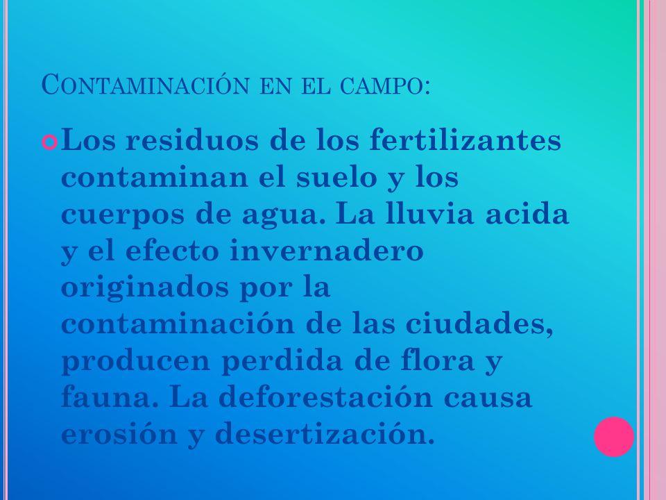 C ONTAMINACION EN LA CIUDAD : La contaminación atmosférica es producida por automóviles y fabricas.