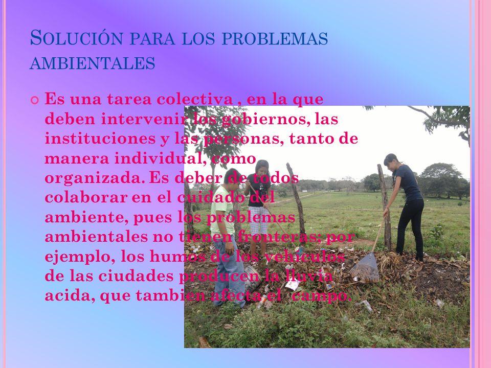 C ONTAMINACIÓN EN EL CAMPO : Los residuos de los fertilizantes contaminan el suelo y los cuerpos de agua.