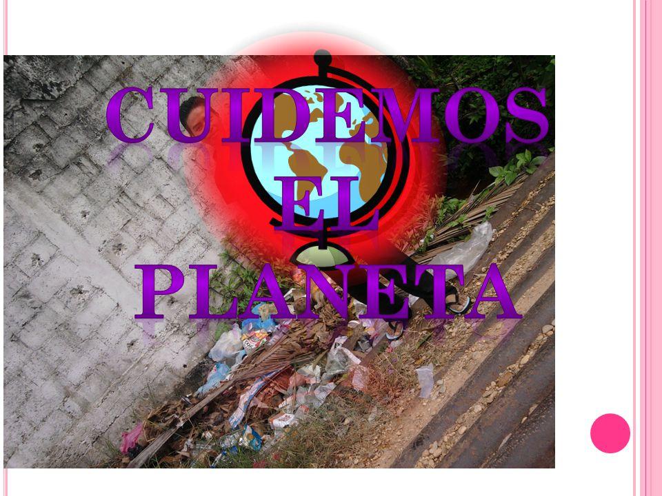 En México, numerosas personas, organizaciones e instituciones realizan acciones encaminadas a proteger y mejorar el ambiente.