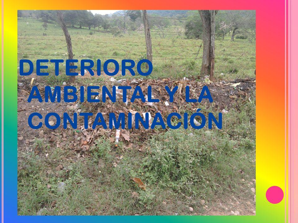 L A PARTICIPACIÓN DE LOS JÓVENES EN EL DESARROLLO DE LA COMUNIDAD