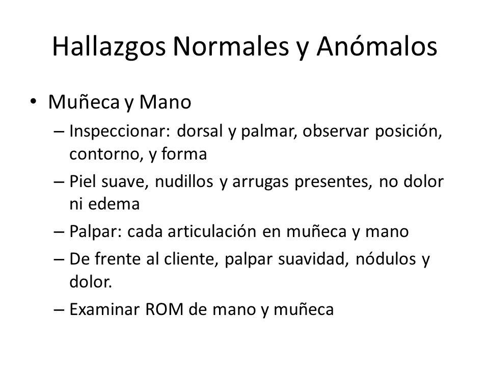 ROM Mano Muñeca