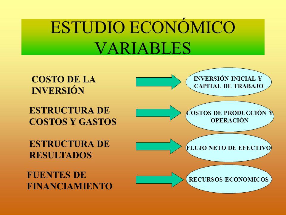 ESTUDIO ECONÓMICO VARIABLES COSTO DE LA INVERSIÓN ESTRUCTURA DE COSTOS Y GASTOS ESTRUCTURA DE RESULTADOS FUENTES DE FINANCIAMIENTO INVERSIÓN INICIAL Y