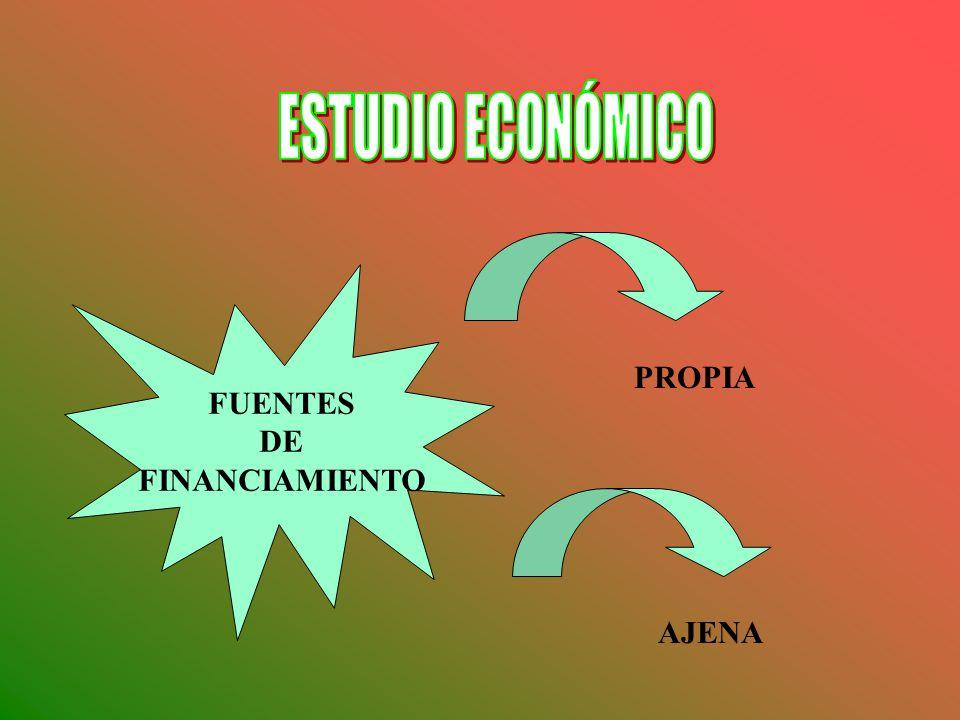 FUENTES DE FINANCIAMIENTO PROPIA AJENA