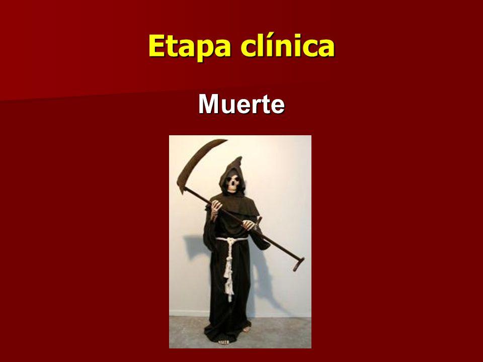 Etapa clínica Muerte