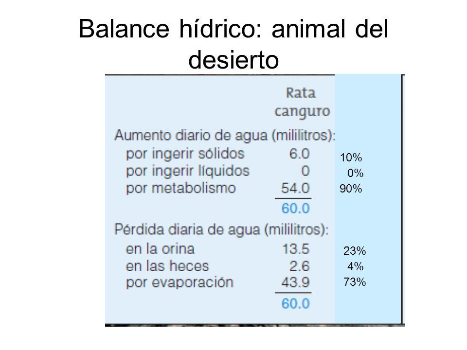 Balance hídrico: animal del desierto 0% 10% 4% 23% 90% 73%