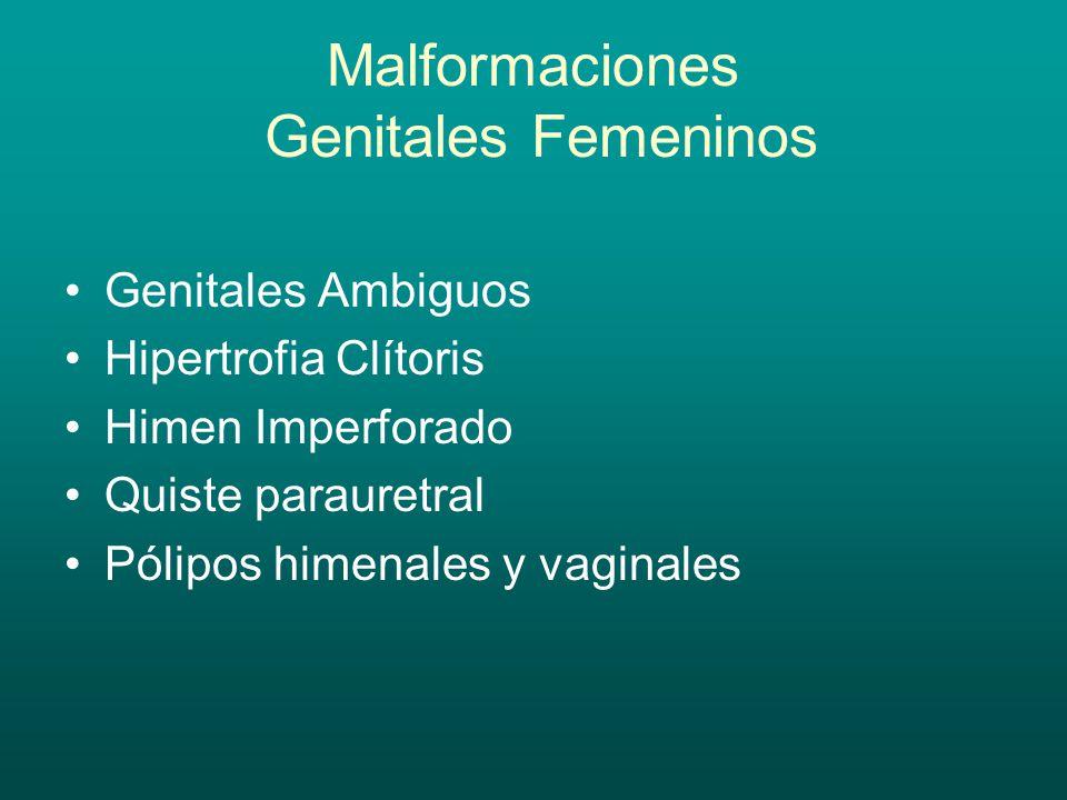 Malformaciones Genitales Femeninos Genitales Ambiguos Hipertrofia Clítoris Himen Imperforado Quiste parauretral Pólipos himenales y vaginales