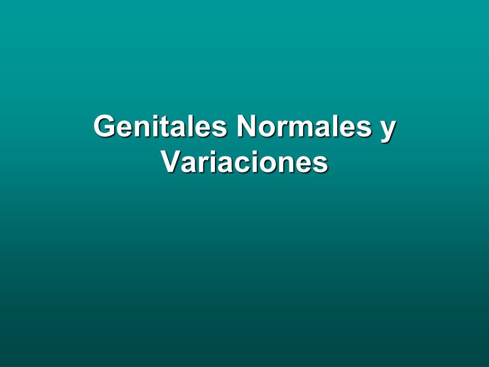 Genitales Normales RN Labios redundantes por traspaso estrógenos materno El himen debe presentar una apertura central, es mas rosado y puede presentar un secreción mucosa y en ocasiones sanguinolenta.