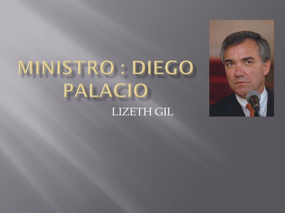 LIZETH GIL. DIEGO PALACIO BETANCOURT Ministro de Protección Social ...