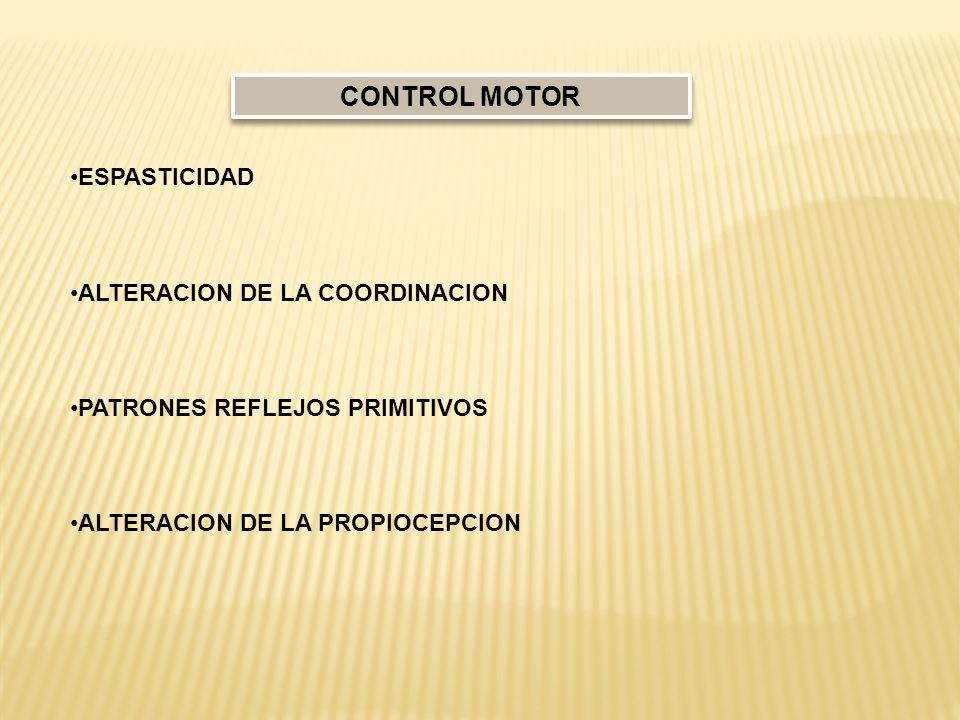 ESPASTICIDAD ALTERACION DE LA COORDINACION PATRONES REFLEJOS PRIMITIVOS ALTERACION DE LA PROPIOCEPCION CONTROL MOTOR