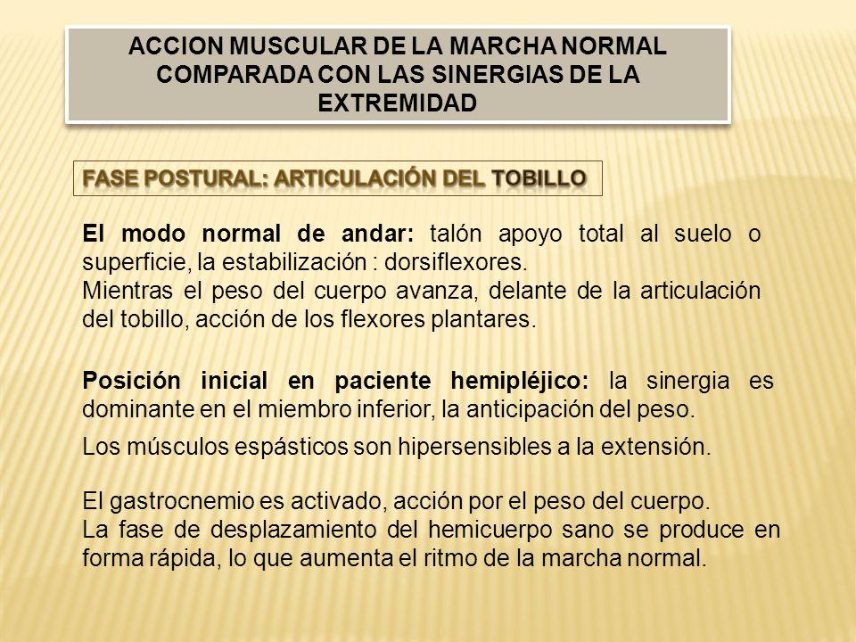 Posición inicial en paciente hemipléjico: la sinergia es dominante en el miembro inferior, la anticipación del peso.
