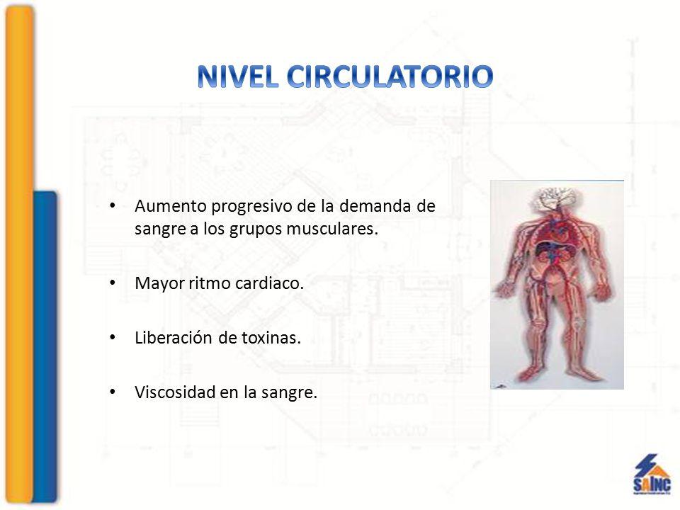 Aumento progresivo de la demanda de sangre a los grupos musculares. Mayor ritmo cardiaco. Liberación de toxinas. Viscosidad en la sangre.