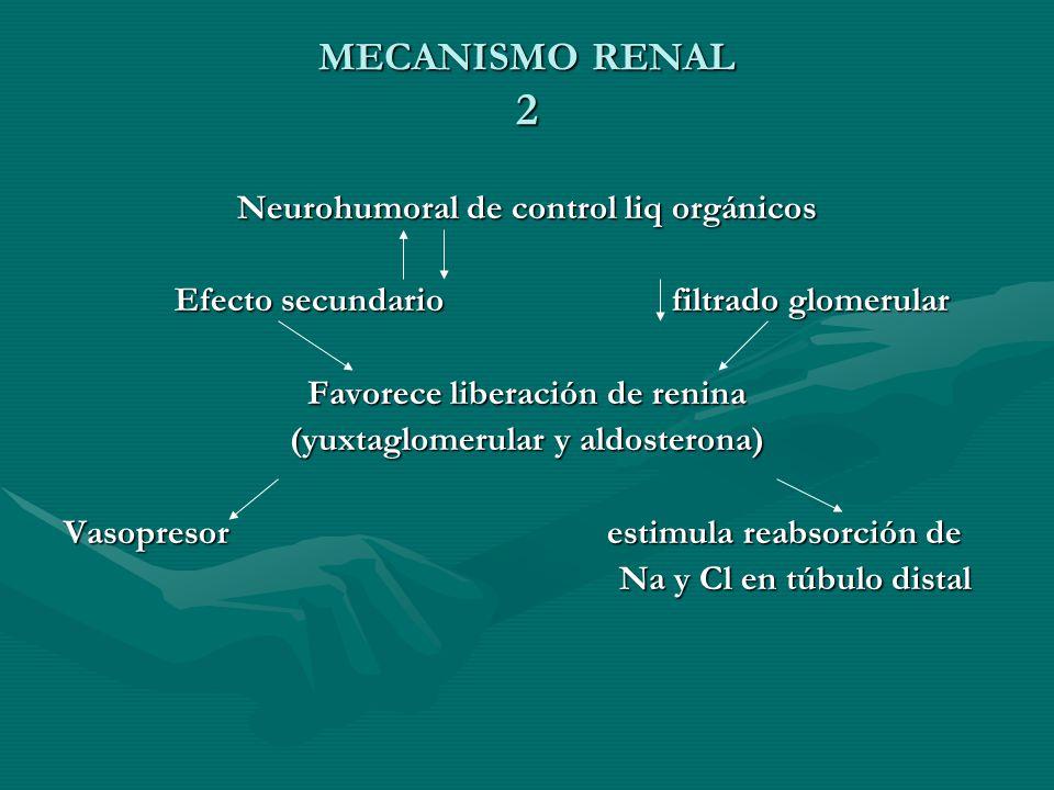 MECANISMO RENAL 2 Neurohumoral de control liq orgánicos Efecto secundario filtrado glomerular Efecto secundario filtrado glomerular Favorece liberación de renina (yuxtaglomerular y aldosterona) Vasopresor estimula reabsorción de Na y Cl en túbulo distal Na y Cl en túbulo distal