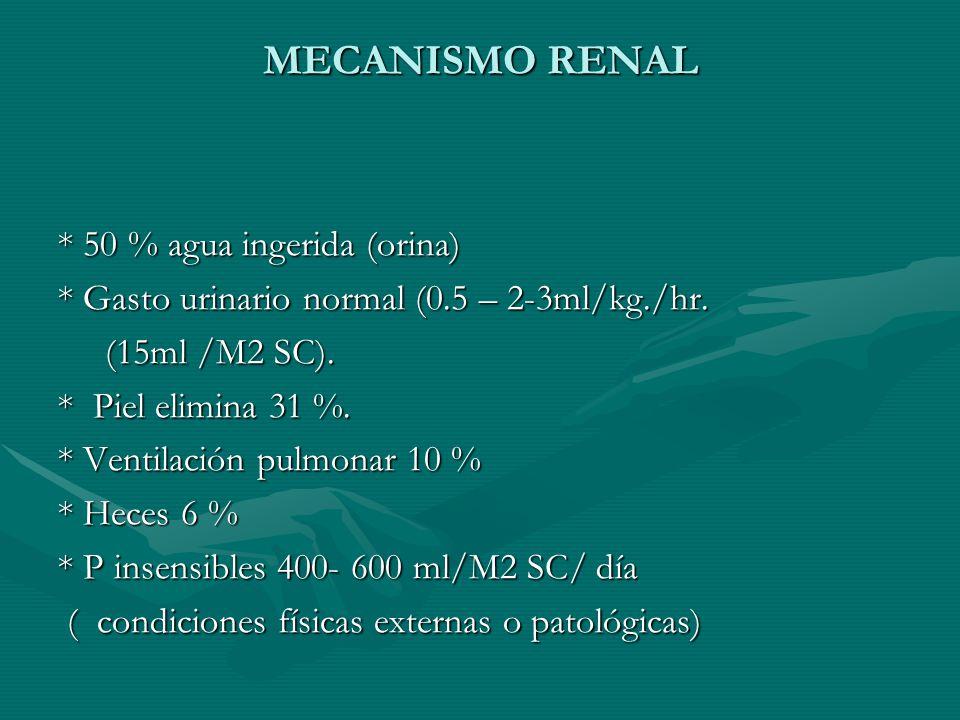 MECANISMO RENAL * 50 % agua ingerida (orina) * Gasto urinario normal (0.5 – 2-3ml/kg./hr.