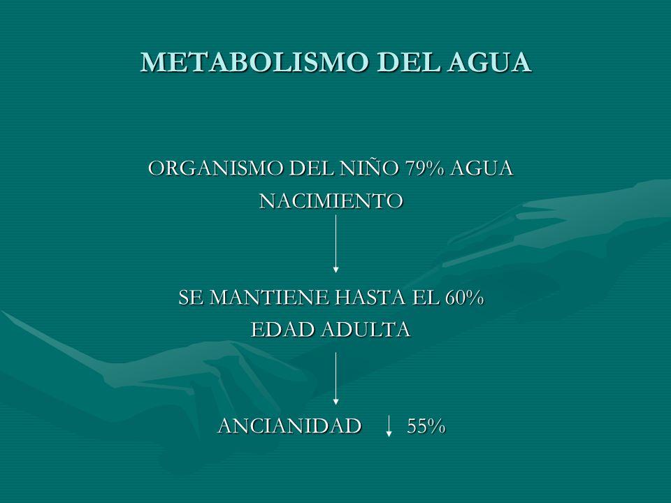 METABOLISMO DEL AGUA ORGANISMO DEL NIÑO 79% AGUA NACIMIENTO SE MANTIENE HASTA EL 60% EDAD ADULTA ANCIANIDAD 55%