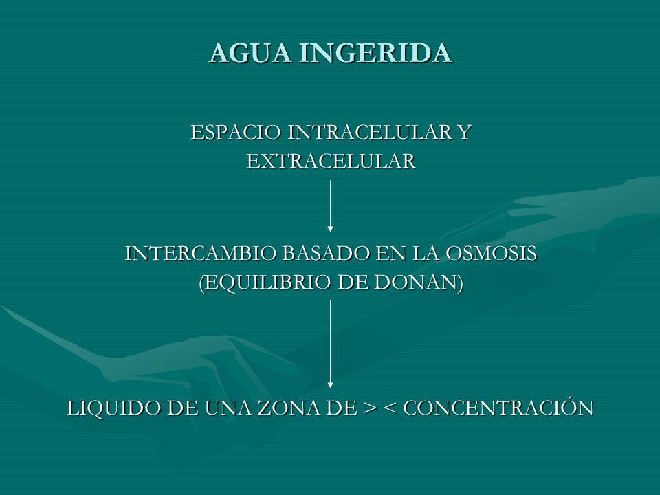 AGUA INGERIDA ESPACIO INTRACELULAR Y EXTRACELULAR INTERCAMBIO BASADO EN LA OSMOSIS (EQUILIBRIO DE DONAN) LIQUIDO DE UNA ZONA DE > < CONCENTRACIÓN