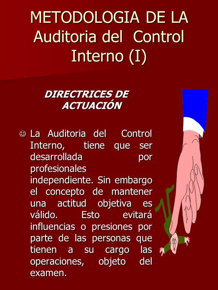 METODOLOGIA DE LA Auditoria del Control Interno (I) DIRECTRICES DE ACTUACIÓN J La Auditoria del Control Interno, tiene que ser desarrollada por profes