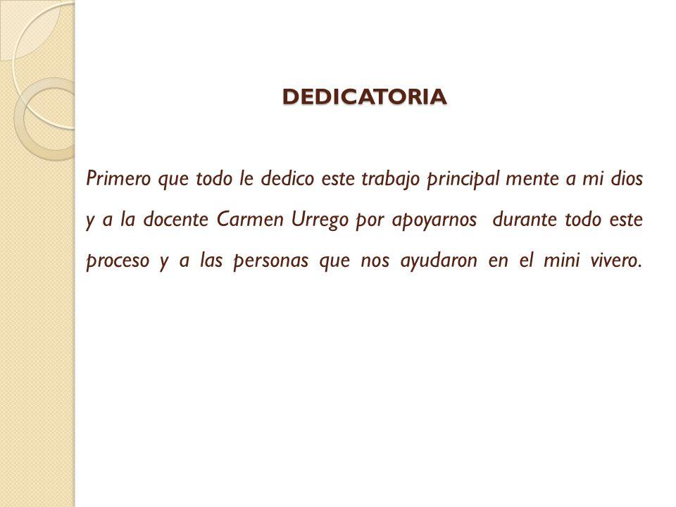 Dedicatoria De Un Trabajo Monografico | newhairstylesformen2014.com