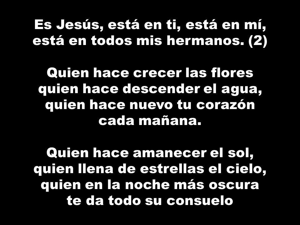 Es Jesús, está en ti, está en mí, está en todos mis hermanos.