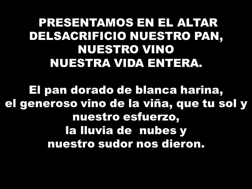 PRESENTAMOS EN EL ALTAR DEL SACRIFICIO NUESTRO PAN, NUESTRO VINO NUESTRA VIDA ENTERA.