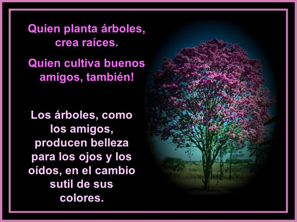 Quien planta árboles, crea raíces.Quien cultiva buenos amigos, también.