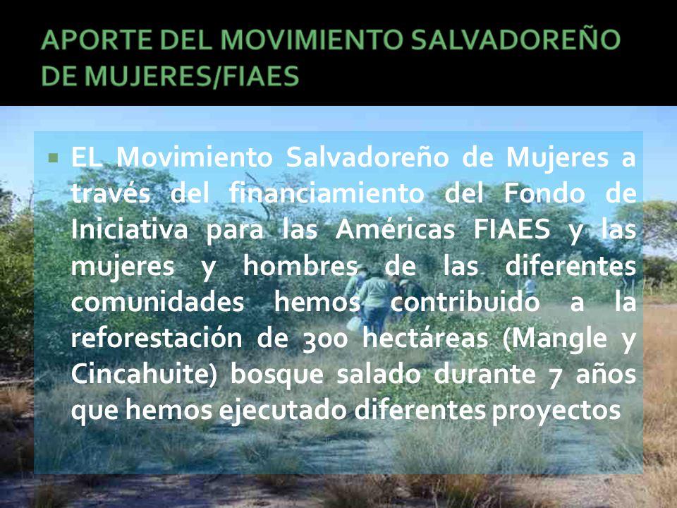  EL Movimiento Salvadoreño de Mujeres a través del financiamiento del Fondo de Iniciativa para las Américas FIAES y las mujeres y hombres de las diferentes comunidades hemos contribuido a la reforestación de 300 hectáreas (Mangle y Cincahuite) bosque salado durante 7 años que hemos ejecutado diferentes proyectos