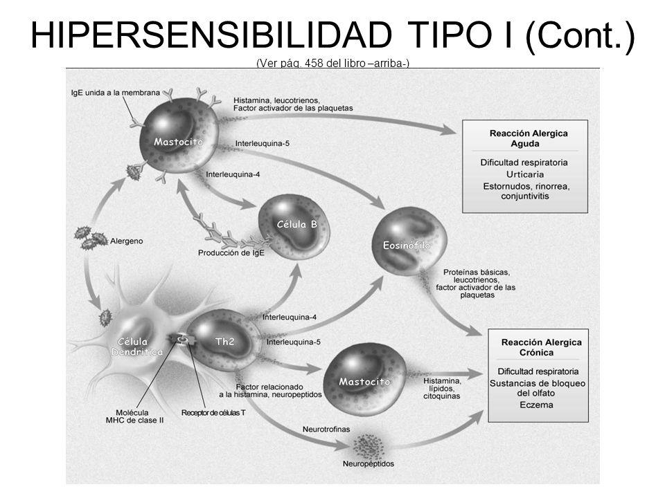 HIPERSENSIBILIDAD TIPO I (Cont.) (Ver pág. 458 del libro –arriba-)