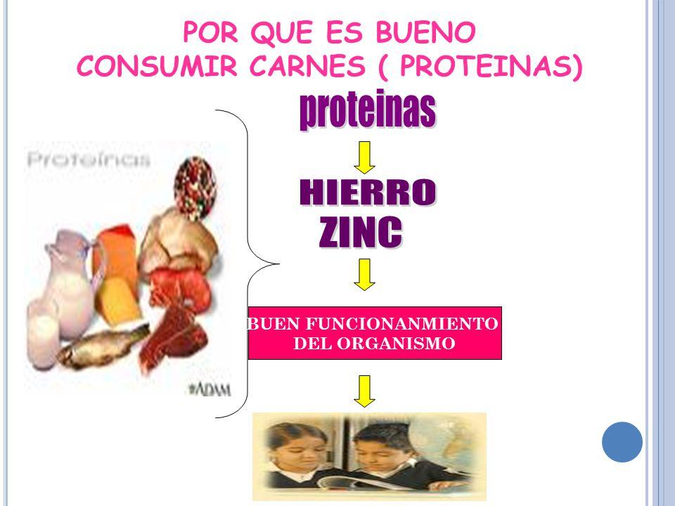 BUEN FUNCIONANMIENTO DEL ORGANISMO POR QUE ES BUENO CONSUMIR CARNES ( PROTEINAS)