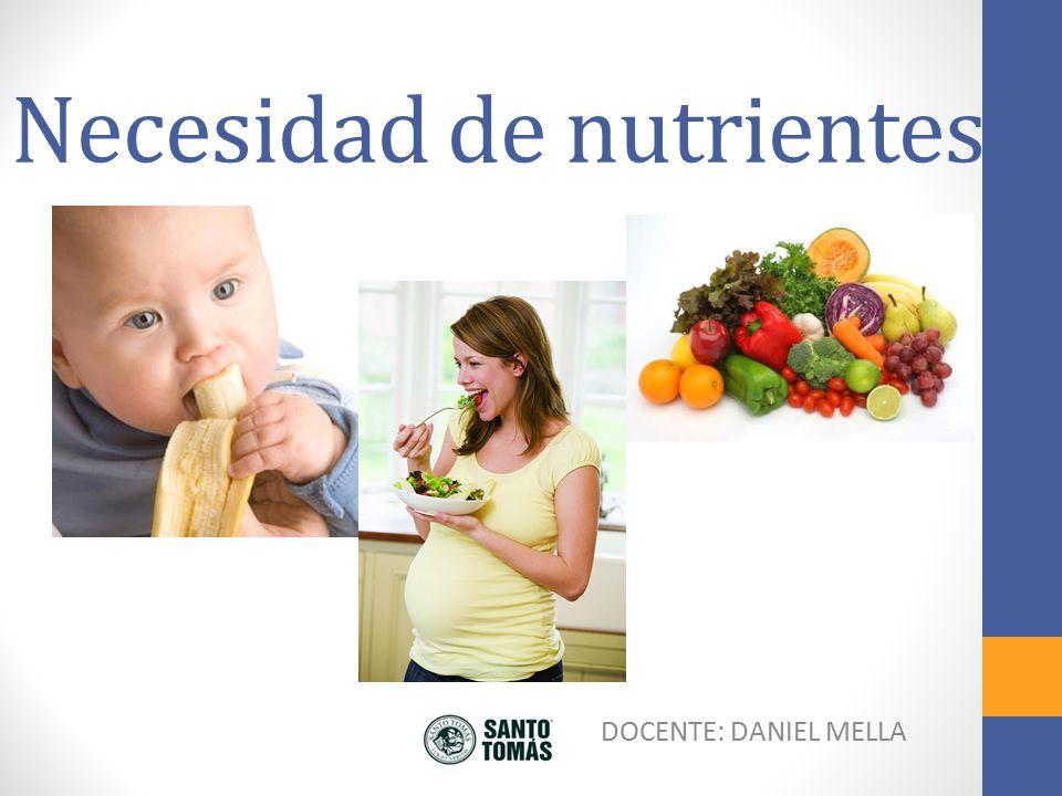 Necesidad de nutrientes Todos los seres vivos necesitan de nutrientes para poder garantizar las funciones vitales.