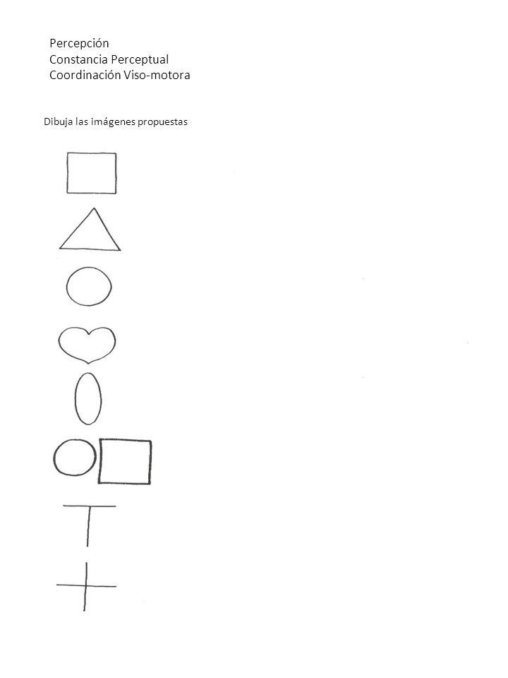 Percepción Constancia Perceptual Coordinación Viso-motora Dibuja las imágenes propuestas