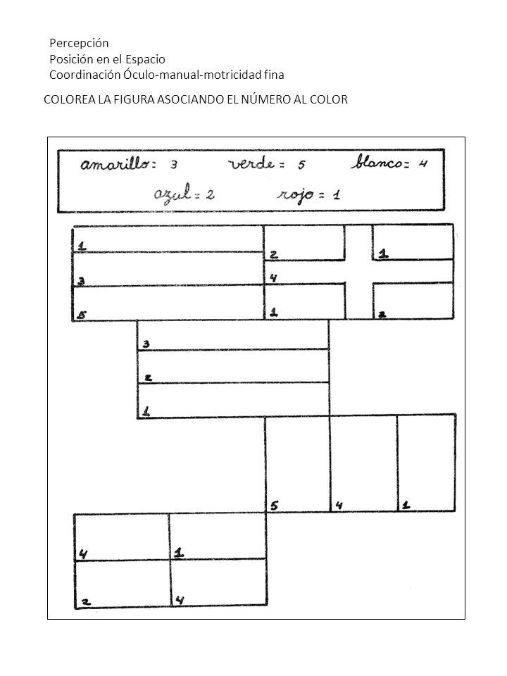 COLOREA LA FIGURA ASOCIANDO EL NÚMERO AL COLOR Percepción Posición en el Espacio Coordinación Óculo-manual-motricidad fina