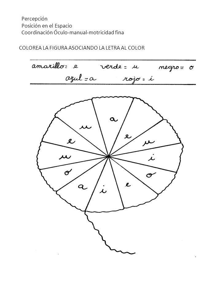 COLOREA LA FIGURA ASOCIANDO LA LETRA AL COLOR Percepción Posición en el Espacio Coordinación Óculo-manual-motricidad fina