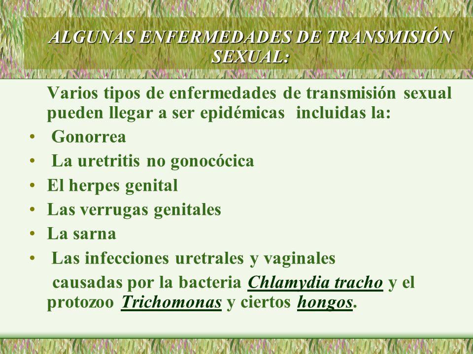 Varios tipos de enfermedades de transmisión sexual pueden llegar a ser epidémicas incluidas la: Gonorrea La uretritis no gonocócica El herpes genital