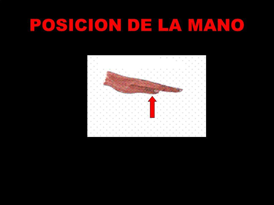 POSICION DE LA MANO