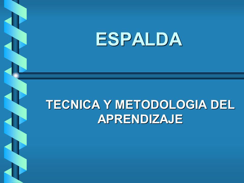 ESPALDA TECNICA Y METODOLOGIA DEL APRENDIZAJE
