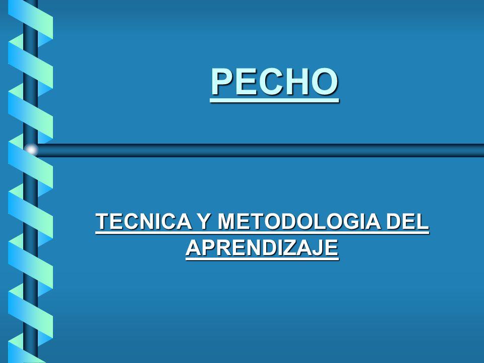 PECHO TECNICA Y METODOLOGIA DEL APRENDIZAJE