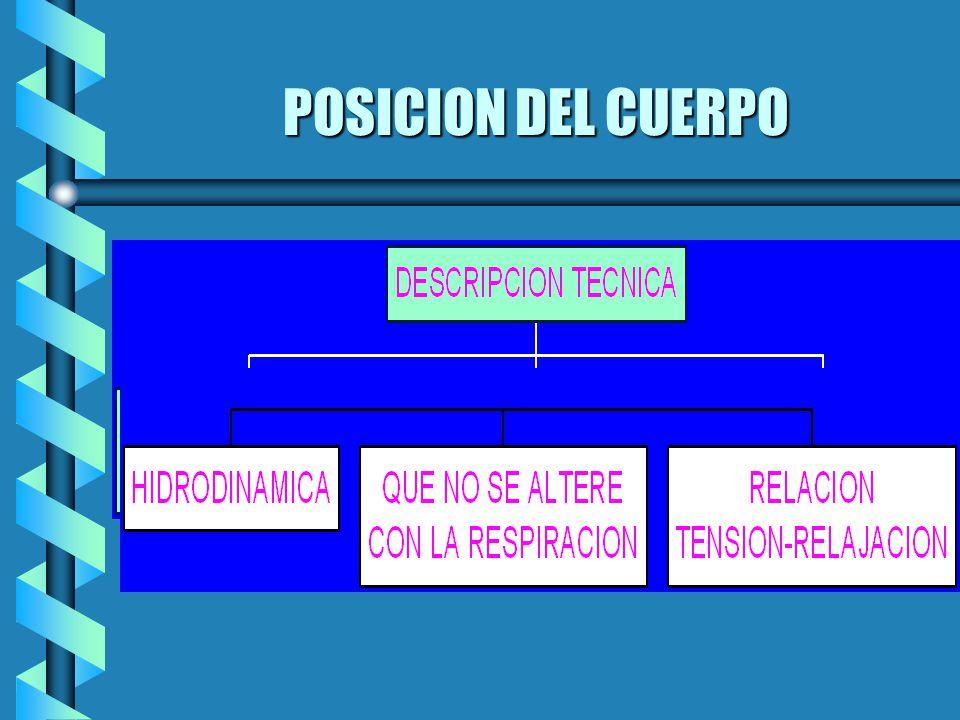 POSICION DEL CUERPO