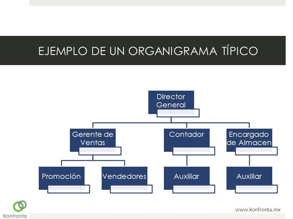 www.konfronta.mx EJEMPLO DE UN ORGANIGRAMA TÍPICO Director General Gerente de Ventas PromociónVendedores Contador Auxiliar Encargado de Almacen Auxiliar