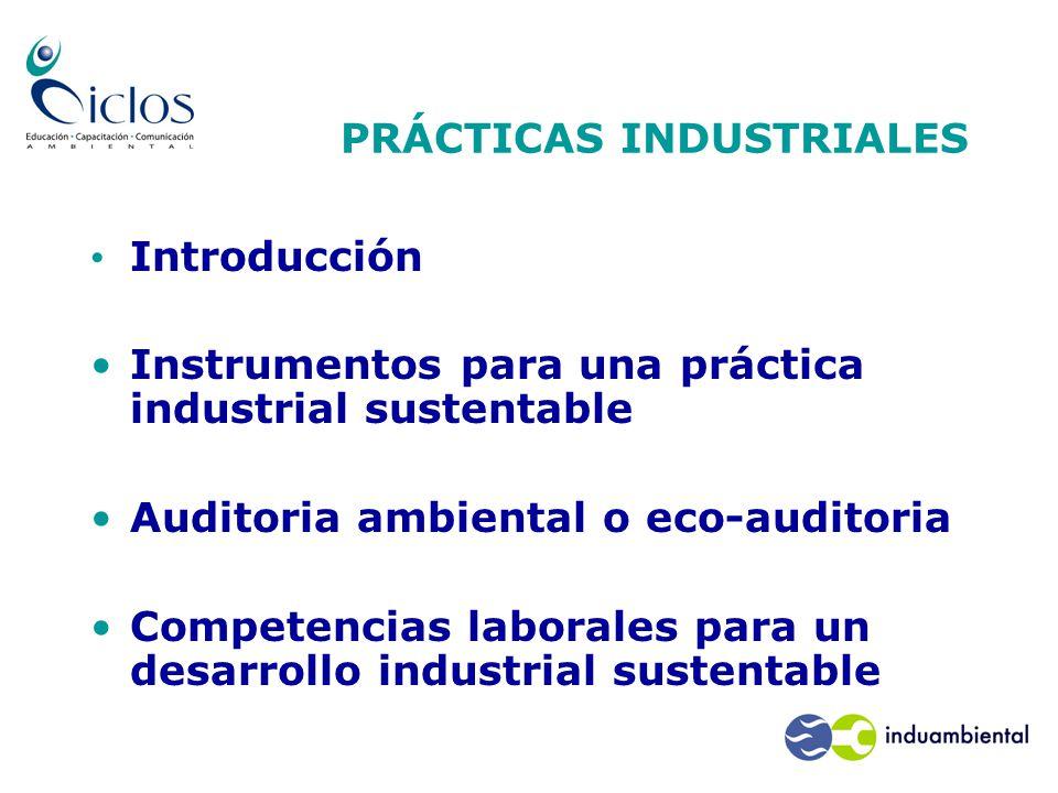 Introducción Instrumentos para una práctica industrial sustentable Auditoria ambiental o eco-auditoria Competencias laborales para un desarrollo industrial sustentable