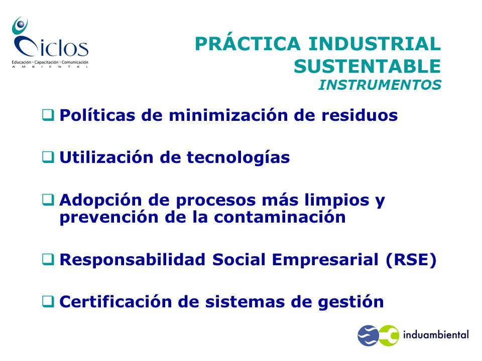 PRÁCTICA INDUSTRIAL SUSTENTABLE INSTRUMENTOS  Políticas de minimización de residuos  Utilización de tecnologías  Adopción de procesos más limpios y prevención de la contaminación  Responsabilidad Social Empresarial (RSE)  Certificación de sistemas de gestión