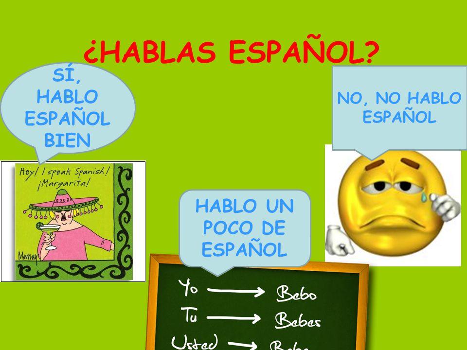 ¿HABLAS ESPAÑOL SÍ, HABLO ESPAÑOL BIEN HABLO UN POCO DE ESPAÑOL NO, NO HABLO ESPAÑOL