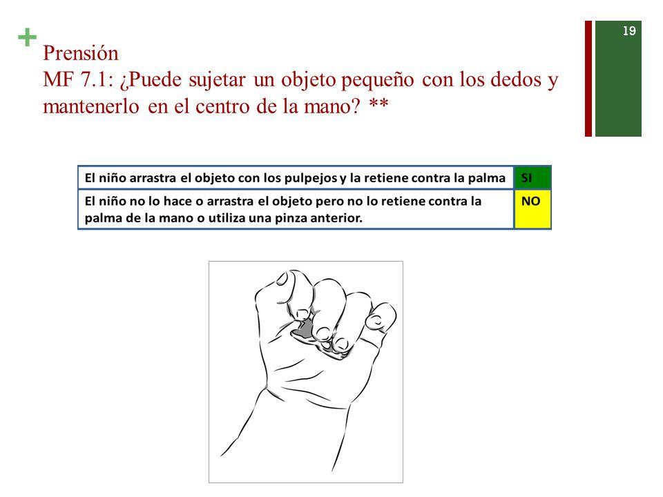 + Prensión MF 7.1: ¿Puede sujetar un objeto pequeño con los dedos y mantenerlo en el centro de la mano.