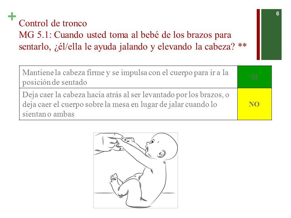 + Control de tronco MG 5.1: Cuando usted toma al bebé de los brazos para sentarlo, ¿él/ella le ayuda jalando y elevando la cabeza.
