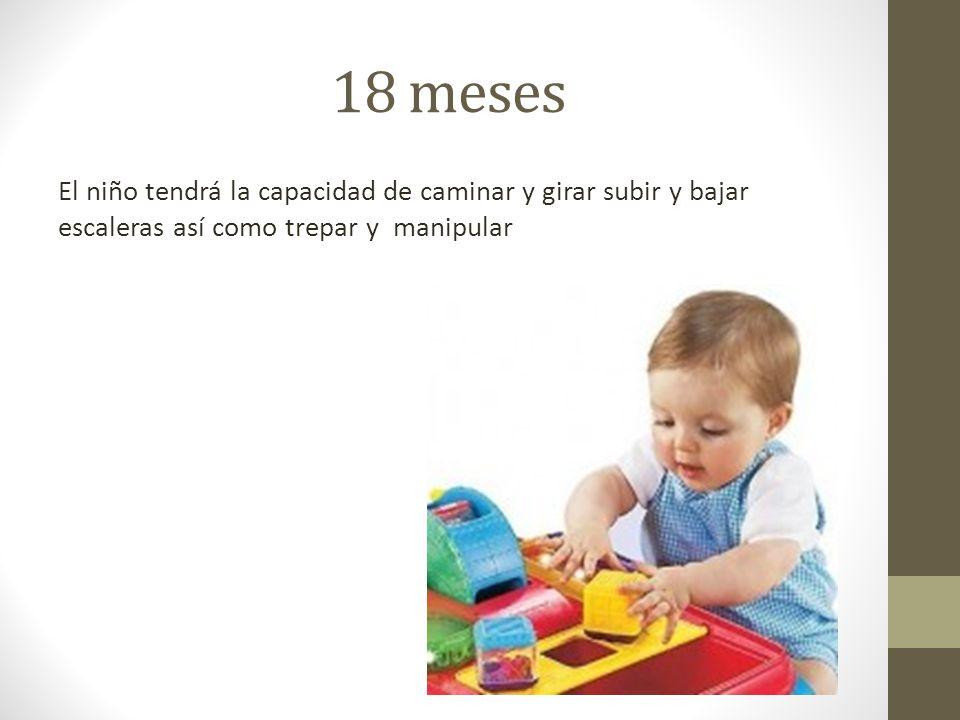 18 meses El niño tendrá la capacidad de caminar y girar subir y bajar escaleras así como trepar y manipular