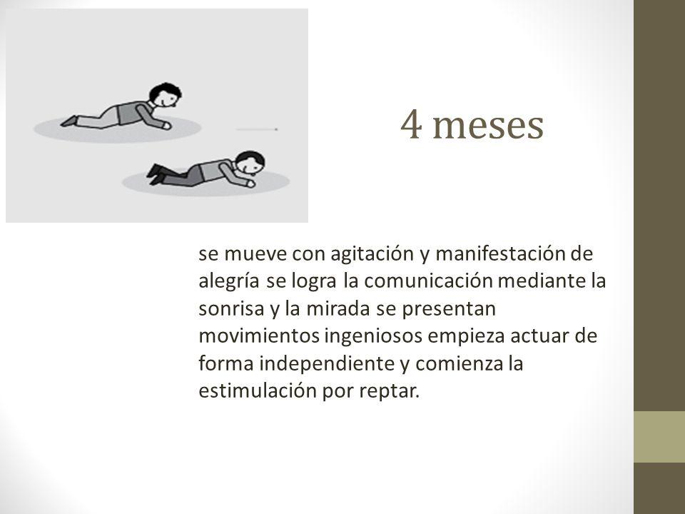 Veintiuno-veinticuatro meses: El niño tiene adquirida gran autonomía de movimientos por lo que puede: reptar, gatear, caminar, correr, atrapar, lanzar, etc.